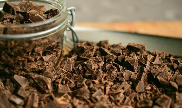 chocolat toxique pour le chien